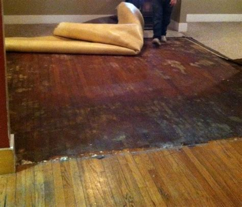 flooring   How can I remove carpet adhesive from hardwood