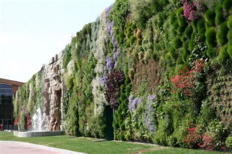 Largest Vertical Garden Largest Vertical Garden At Shopping Center At Rozanno Italy