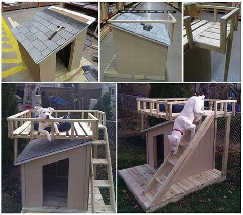 pre built dog houses 40 of the most incredible ideas diy you need to try