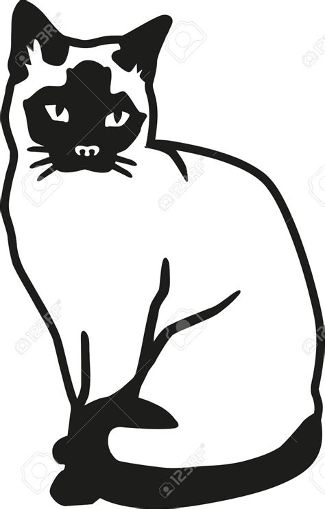 Siamese Cat clipart vector - Pencil and in color siamese ... Free Clipart Of Siamese Cats