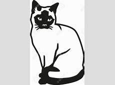 Siamese Cat clipart vector - Pencil and in color siamese ... Free Clipart Of Siamese Cats