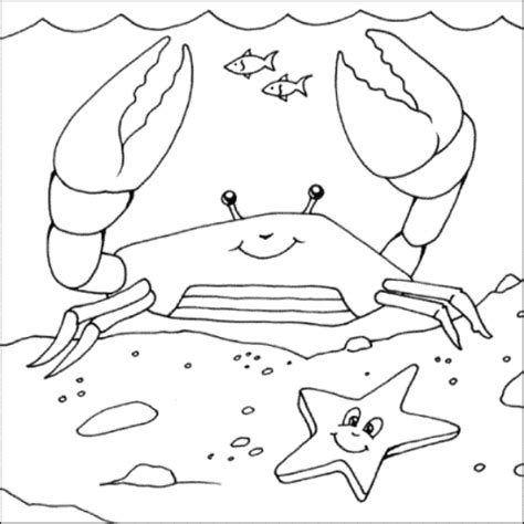 king crab coloring page printable coloring pages april 2013
