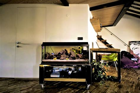 playroom interior with aquarium 4013 decoration