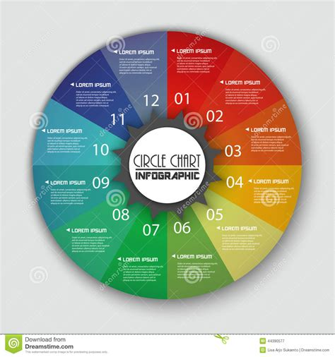 rainbow color circle chart info graphic stock vector