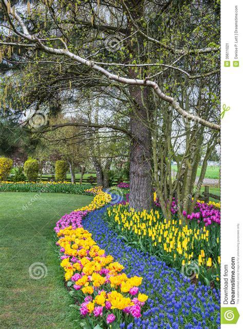 Garden Border Plants Flowers Flower Garden Stock Photo Image 39611021