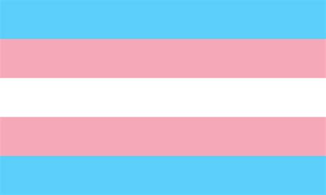 transgender colors file transgender pride flag svg wikimedia commons