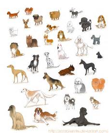 types of dogs different types of dogs with names