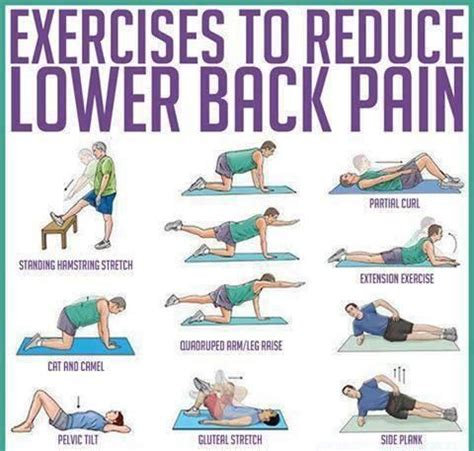 Lower Back While Detoxing lower back exercise great stretches to do before and