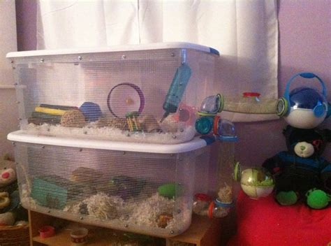 diy bin hamster cage 17 best images about awesome hamster cages on guinea pigs hamster cages and gerbil