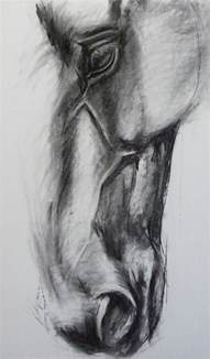 the 25 best horse head drawing ideas on pinterest horse