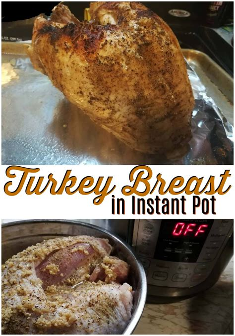 printable recipes for instant pot turkey breast in instant pot recipes for instant pot