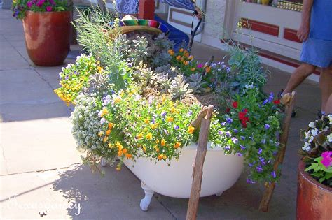 container garden ideas texasdaisey creations container garden ideas
