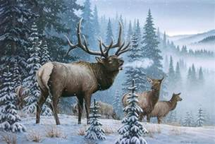 Fishing Wall Murals storm s end rocky mountain elk larry zach wildlife art