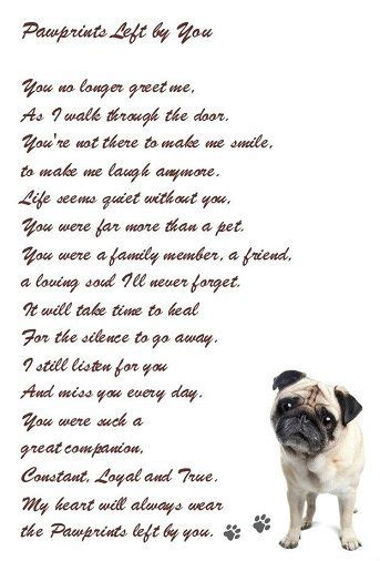 loss of a pug poem favorite quotes loss of a beloved pet brown the best