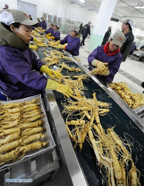 retailers gain excessive profit from ginseng china