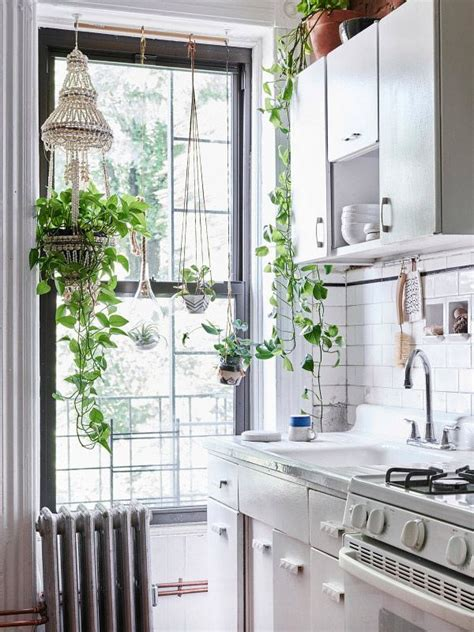 decorar fachadas con plantas 33 maravillosas ideas para decorar con plantas 6