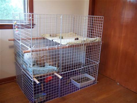 Home Made Rabbit Hutch hd animals rabbit cages