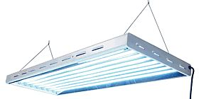 sun blaze t5 48 6 l t5 led fluorescent grow light systems for plants from