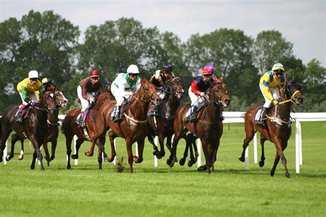 try a new race day do with a double french braid women bettingexpert racing daily horse racing tips news and stats