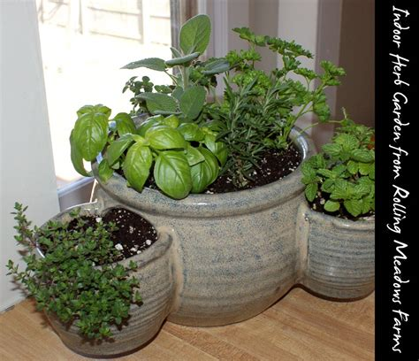 Indoor Herb Garden | indoor gardening archives soap deli news