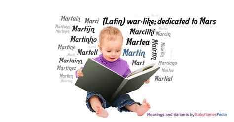 martin meaning of martin what does martin