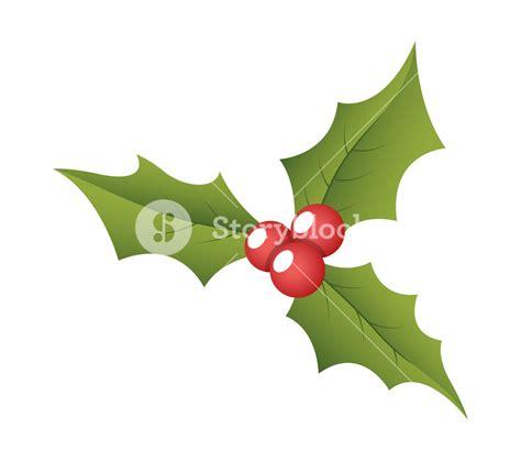 christmas leaf holy leaves vector royalty free stock image storyblocks