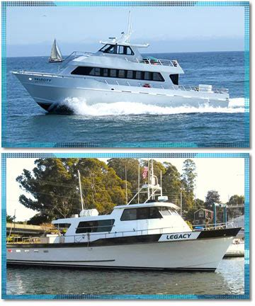 charter boats monterey bay velocity stagnaro sport fishing charters and whale