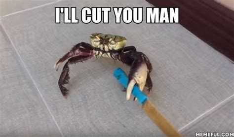 Crab Meme - this video of a gangster crab holding a knife to fight