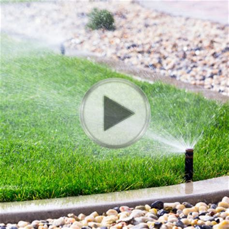 Wilson Lawn And Garden by Wilson Lawn Weedout 174 Ultra Premier Tech Home And Garden