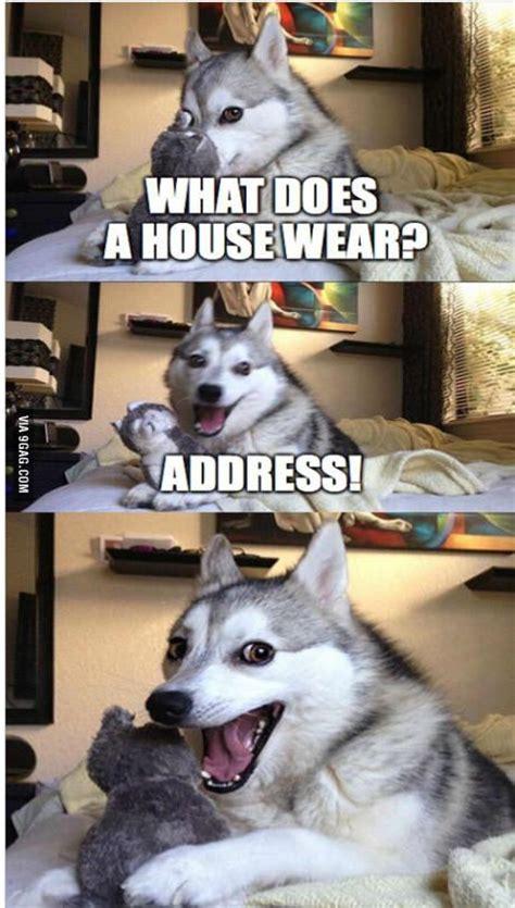 Pun Husky Meme - pun husky lols and rofls pinterest pun husky puns