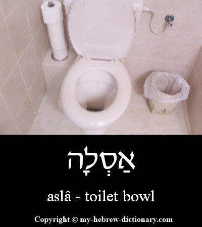 how to say bathroom in hebrew 144 best hebrew images on pinterest