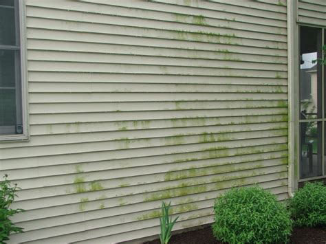 types of siding on old houses home siding repair and installation modernize