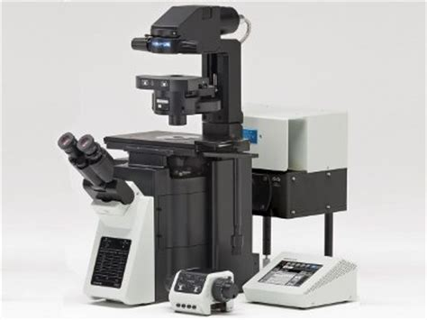 confocal laser scanning microscopes | biocompare.com