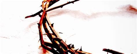 Seven Places Jesus Shed His Blood by 7 Benefits Of The Blood Of Jesus Knowing God