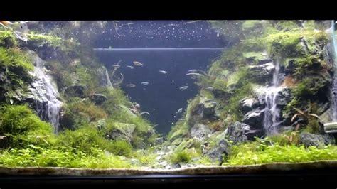 Aquarium Design Waterfall | underwater waterfall for your aquarium using seryu sand