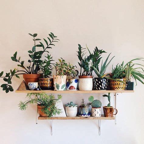 Idee De Deco Salon 4920 by Petits Pots De Plantes Grasses Green