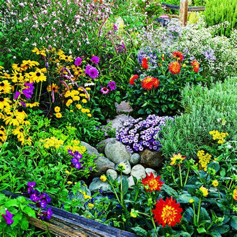 Summer Garden Plants 9 easy summer flowers sunset