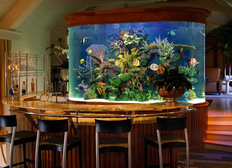 Home Aquarium | custom aquariums