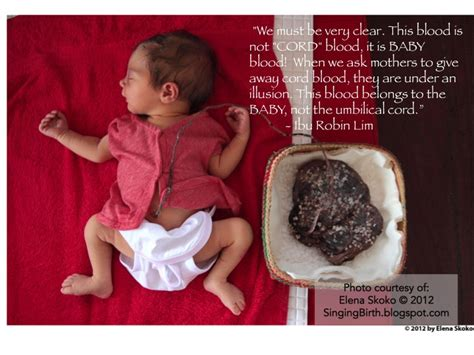 lotus birth benefits human rights infant rights at birth by ibu robin lim