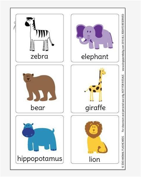 printable animal cards zoo animal flashcards to print out and keep flashcards