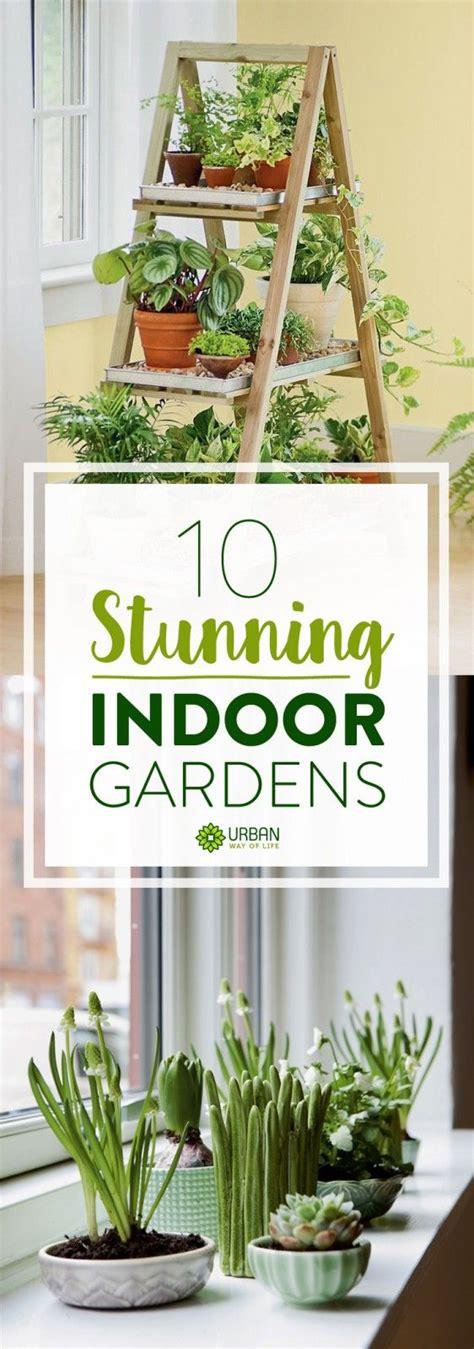 indoor gardening ideas diy inspiration