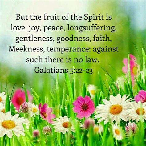 fruit in the bible best 25 galations 5 22 23 ideas on galatians