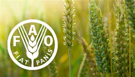 organizacin de las naciones unidas para la agricultura y organizaci 243 n de las naciones unidas para la alimentaci 243 n y