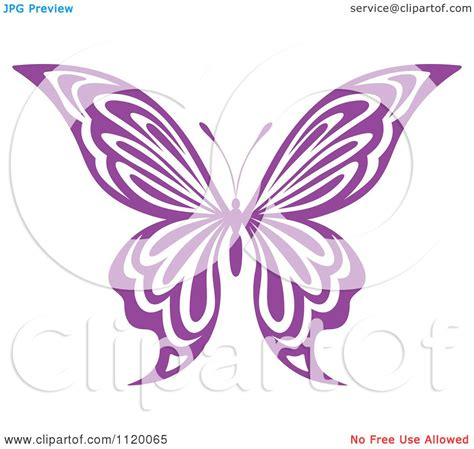 Gamis Bold Butterfly Elblue the gallery for gt purple butterfly vector