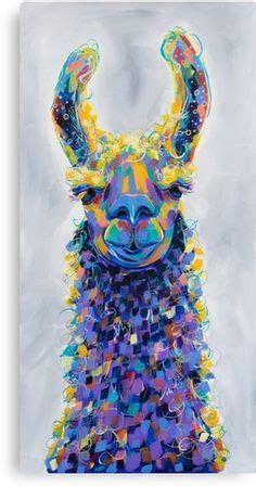 llamas images   llama alpaca llama arts llama face