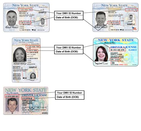 ny license sle driver license learner permit non driver id 21 new york state dmv