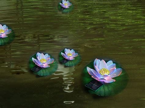 China Water Lily Solar Lights Use For Pond Gy Ts E 007 Solar Lights For Ponds