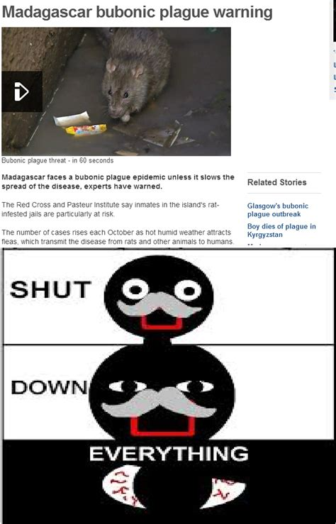 Shut Down Everything Meme - shut down everything