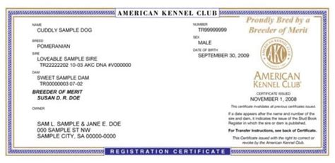 akc registered dogs breeder of merit benefits american kennel club