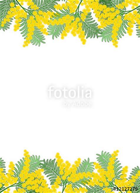 foto cornice gratis quot cornice di mimosa set 1 quot immagini e fotografie royalty
